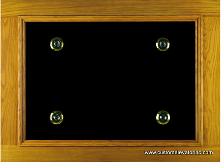 The C-9 ceiling offers a solid oak and veneer with black melamine recessed panel with choice of stain and lacquer finish border including (4) miniature low voltage recessed down lights with polished brass trim rings.